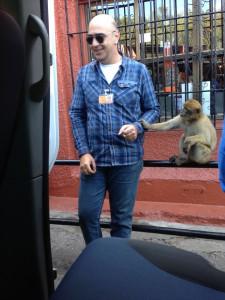 beim Affen füttern auf Gibraltar