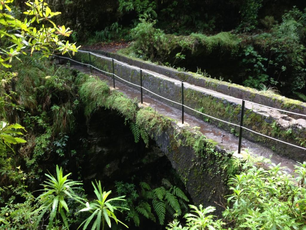 Steinbrücke im Dschungel