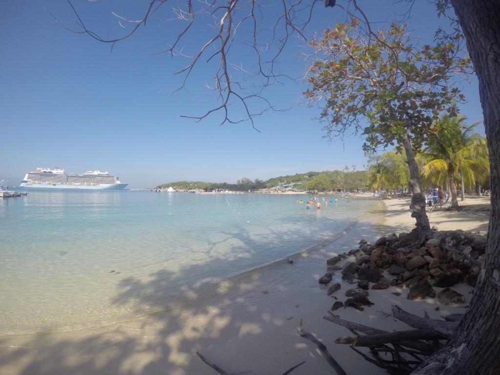 Columbus Cove mit Palmen