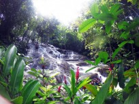 Ocho Rios Wasserfalltour (Jamaika)