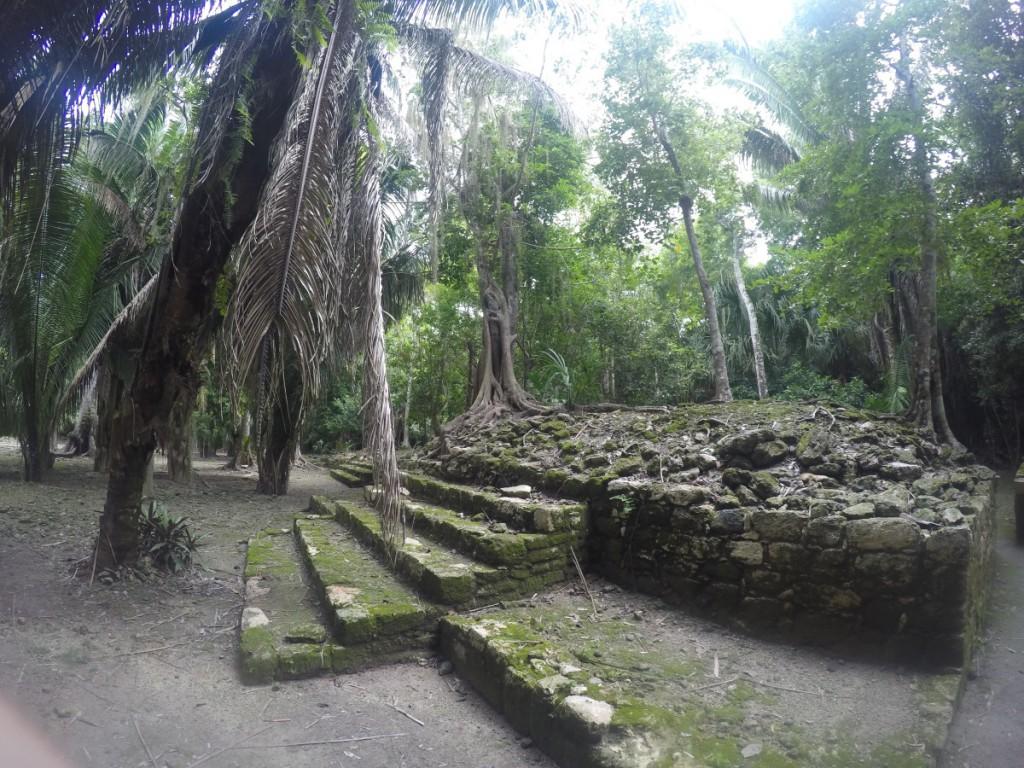 Chacchoben Ruine im Dschungel