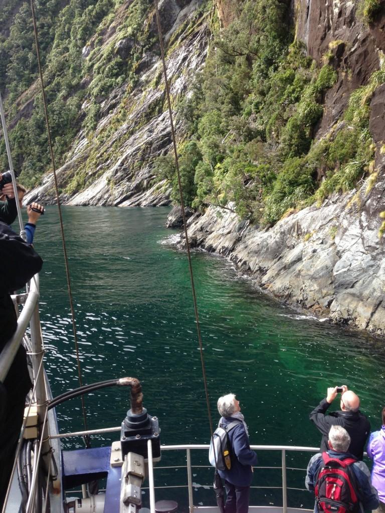 Klippe von Milford Sound