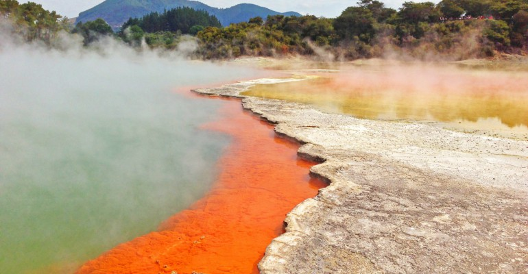 Tauranga mit Abstecher zu den Parks nach Rotorua