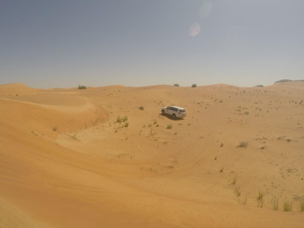 Blick auf Wüste