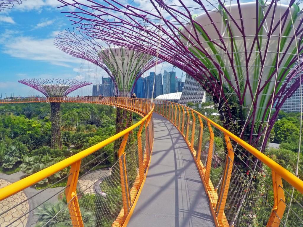 Treetop Walk in Singapur