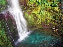 Madeira Kreuzfahrt Landgang – Wanderung in die grüne Hölle (Caldeirao Verde)