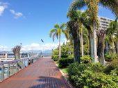 Cairns – vom Kreuzfahrthafen in die Stadt/Marina