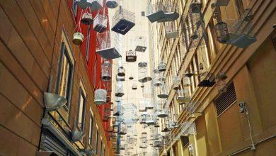 Sydney als Kreuzfahrtziel / Landgang an einem Tag