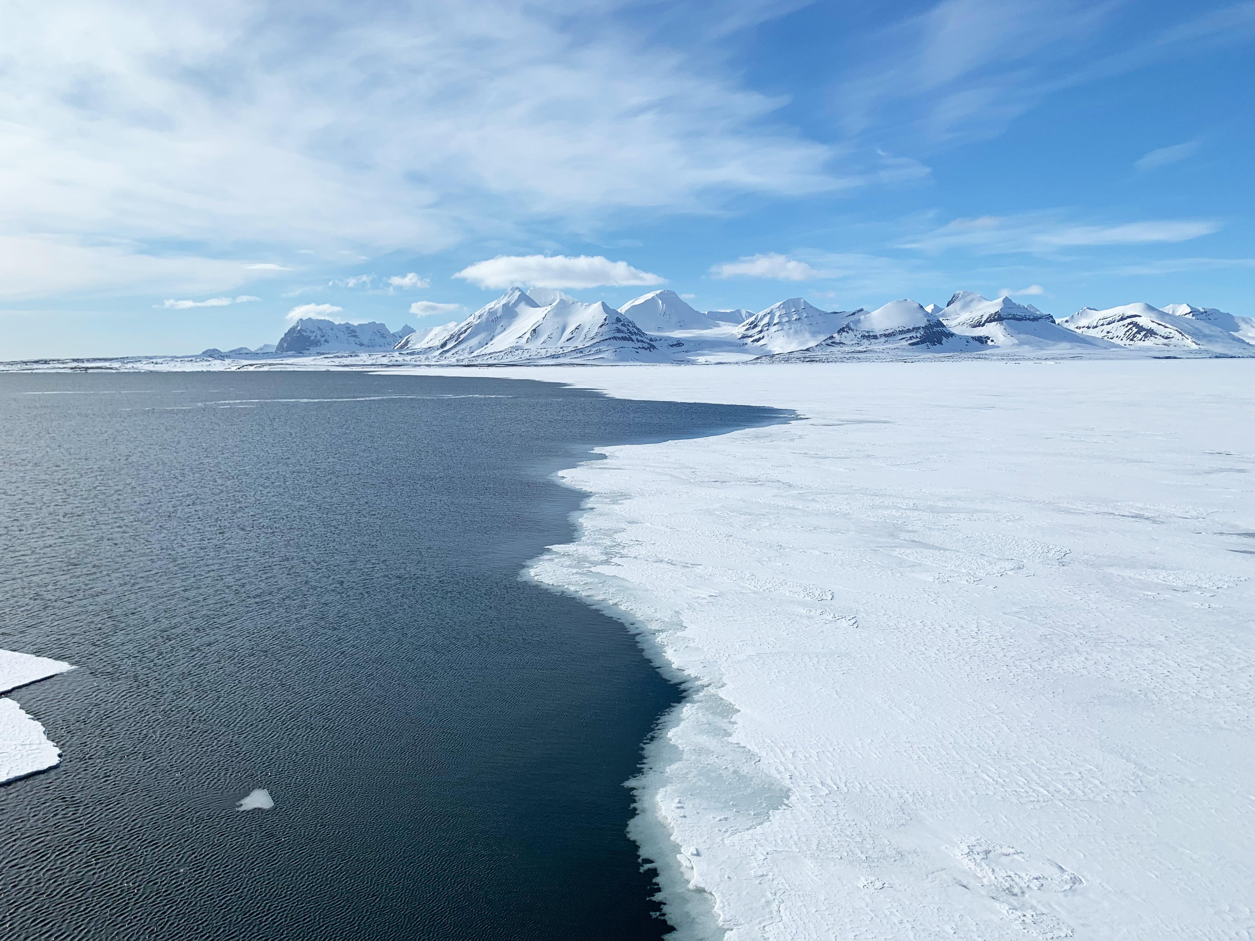 Packeis vor Spitzbergen