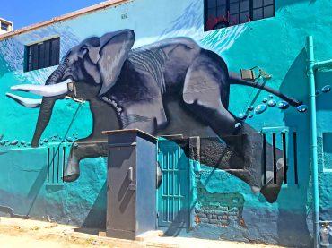 Kapstadt – ins Herz der schönsten Stadt der Welt