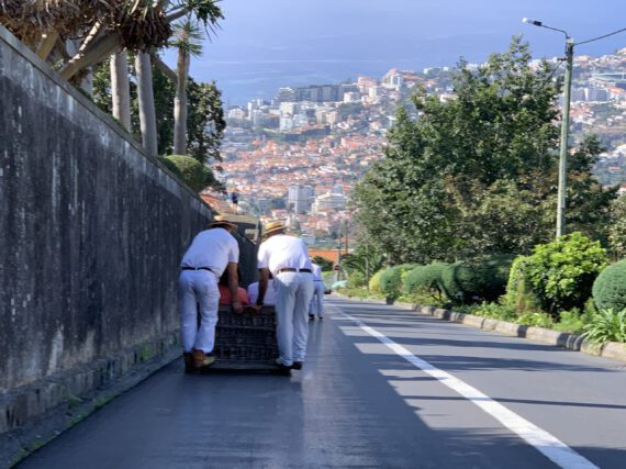 Madeira – 5 Dinge, die du auf jedem Kreuzfahrt-Landgang machen solltest